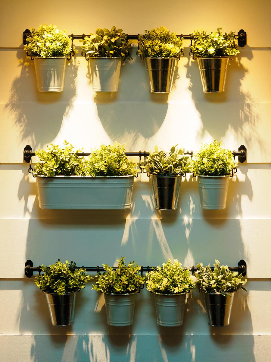 Giardino verticale da interno con vasetti di fiori.