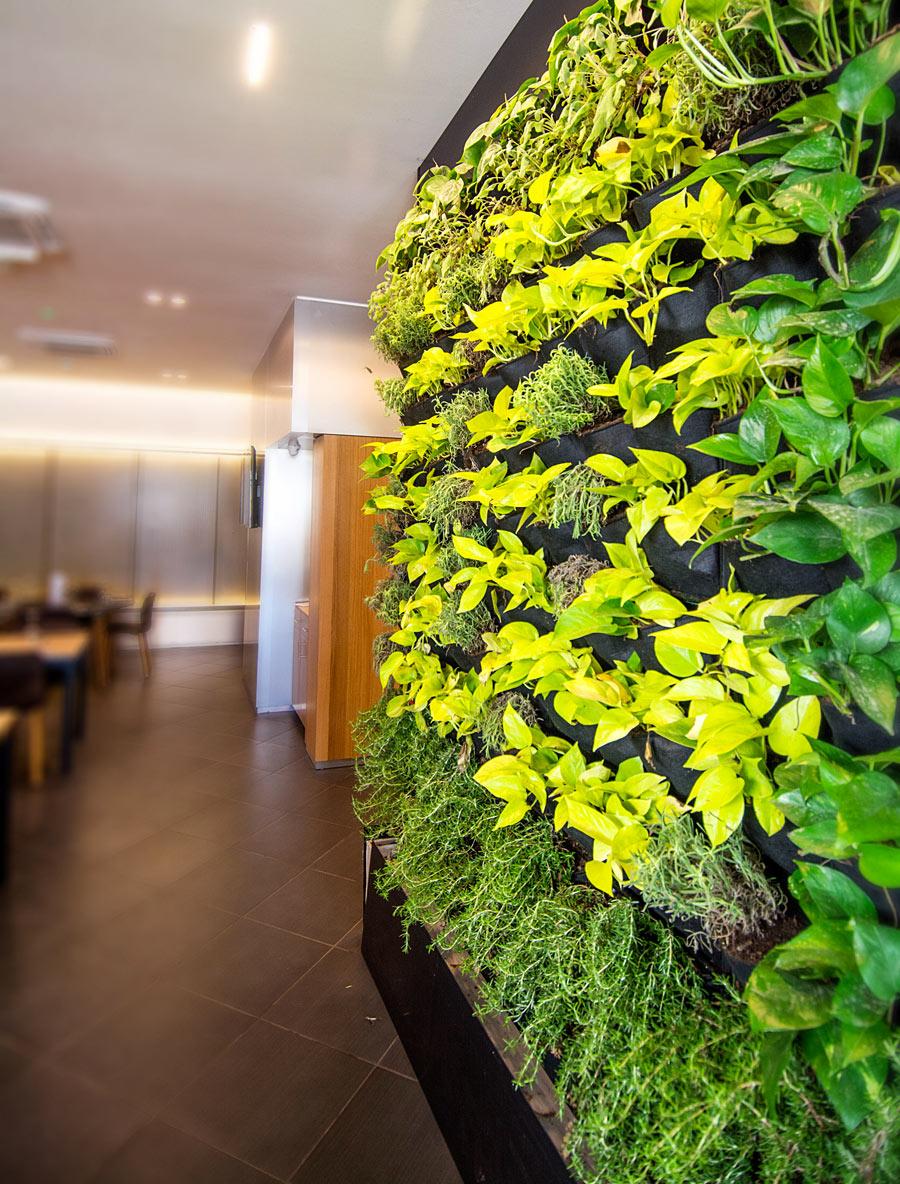 Pareti Verdi Verticali Costi un giardino verticale per una casa green e originale 20