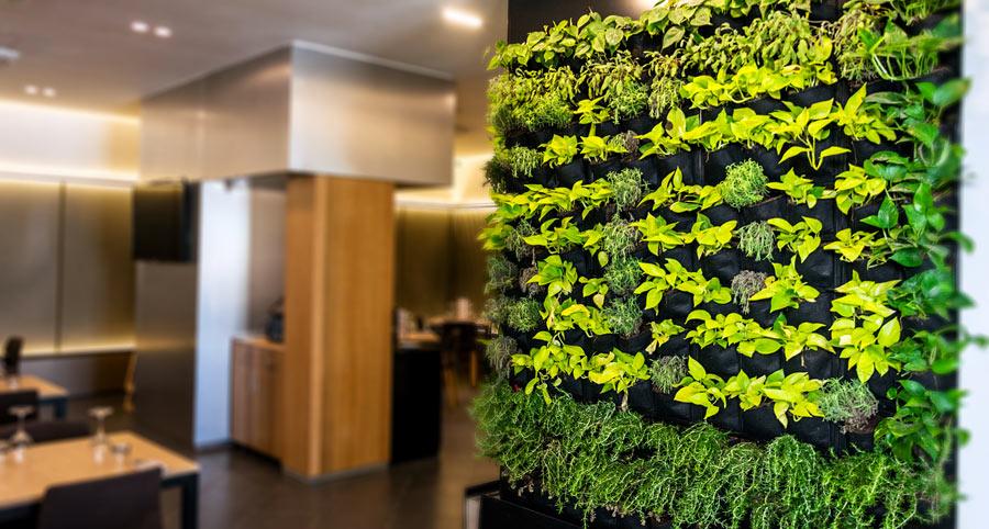 Giardino verticale design per interno.