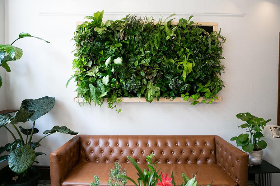 Salotto con quadro vegetale sulla parete.