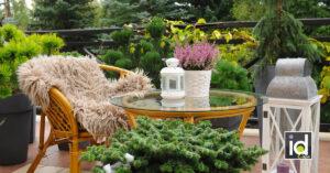 Il balcone in autunno | inverno: i fiori che resistono a pioggia e gelo...