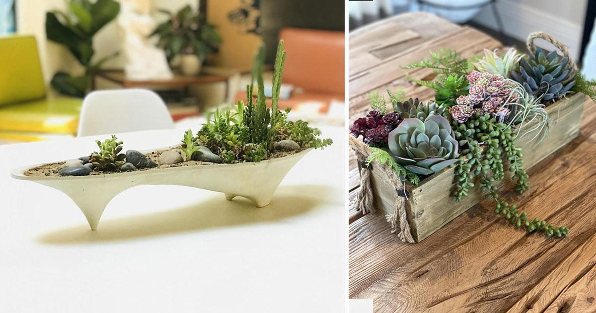 centrotavola con piante grasse