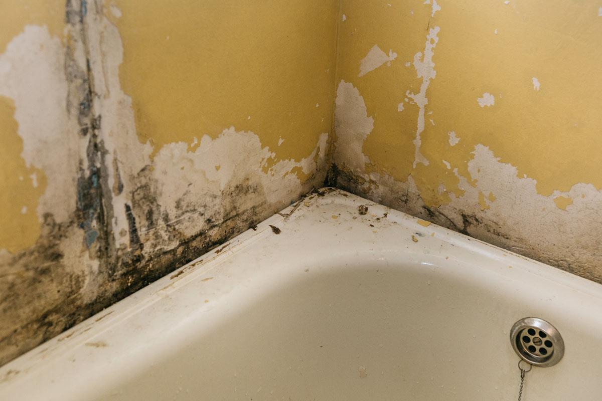 umidità in bagno